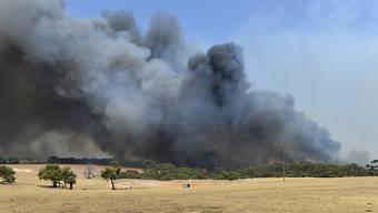 Wegen Buschbränden in der Nähe - hier eine Aufnahme von Cangaroo Island - ist der Flughafen von Canberra geschlossen worden. (archivbild)