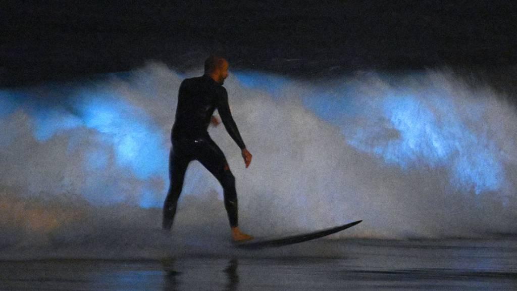 Junger Surfer stirbt bei Hai-Attacke vor Kalifornien