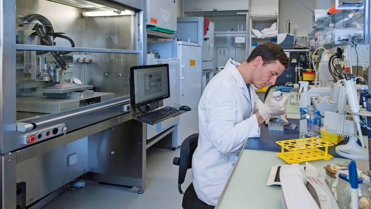 Weniger Tierversuche: Am Kompetenzzentrum TEDD der ZHAW in Wädenswil werden mit 3D-Drucker Zellen in einer Matrix räumlich angeordnet und menschliches Gewebe nachgebildet.
