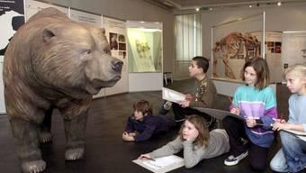 Kinder zeichnen im Alpinen Museum in Bern einen Höhlenbären ab. Trotz seiner gewaltigen Gestalt kam das Tier mit pflanzlichem Proteinen aus. Auch die rumänische Unterart, die man verdächtigte, Fleisch und Fisch auf dem Speiseplan gehabt zu haben, wie Forscher jetzt bewiesen. (Arvchivbild)