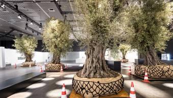 Enzo Enea Naturinstallation Art Basel 2019