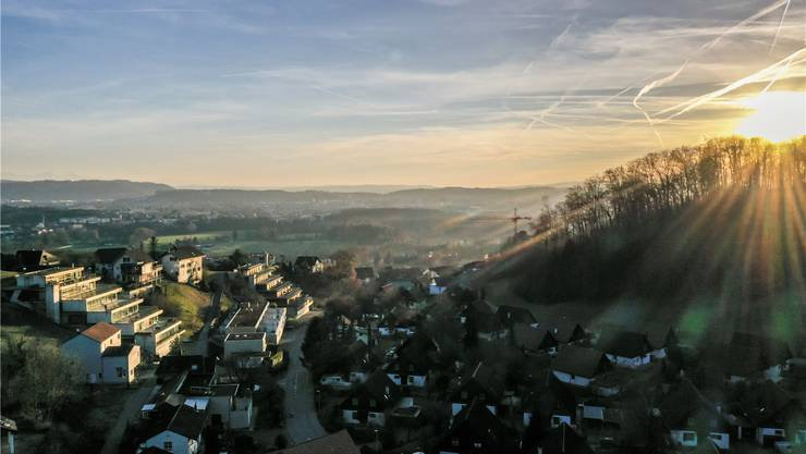 Die Buhalde in Biberstein war früher auch Rebberg; bevor hier Reben wuchsen, war der Hang mit Buchen bewaldet Claudio Thoma