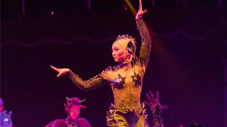 Eine spektakuläre Show bietet die Gruppe «Troupe Zola» aus der Mongolei.