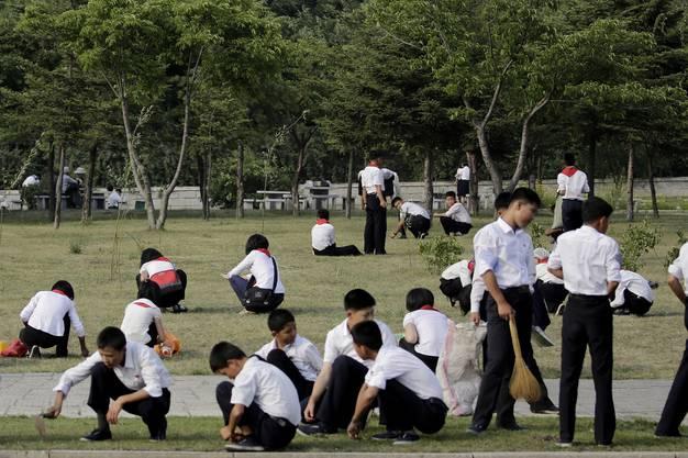Schulkinder pflegen einen Rasen.