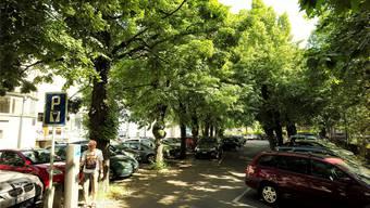 In der Allee gilt künftig wie im ganzen Stedtli: Die erste halbe Stunde kann gratis parkiert werden, danach wirds teurer als heute.