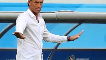 Hervé Renard begann seine Trainerlaufbahn in der sechsthöchsten Liga
