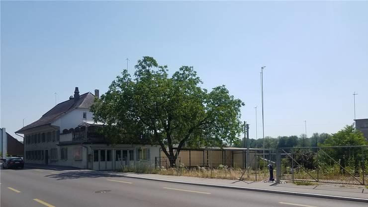 Das alte Mehrfamilienhaus an der Hauptstrasse (links) wird durch ein neues ersetzt, drei weitere kommen rechts zu stehen. sga