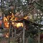 Das brennende Haus in Trimbach an der Marenstrasse.