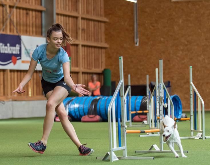 Die Hunde müssen geschickt die Hindernisse überwinden. (Bild: pd)