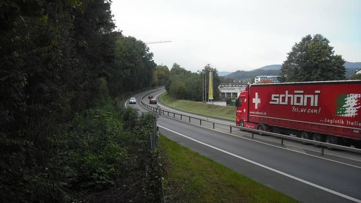 Bald sollen die Anwohner der Rohrerstrasse (l.) weniger hören vom Lärm des Autobahnzubringers.