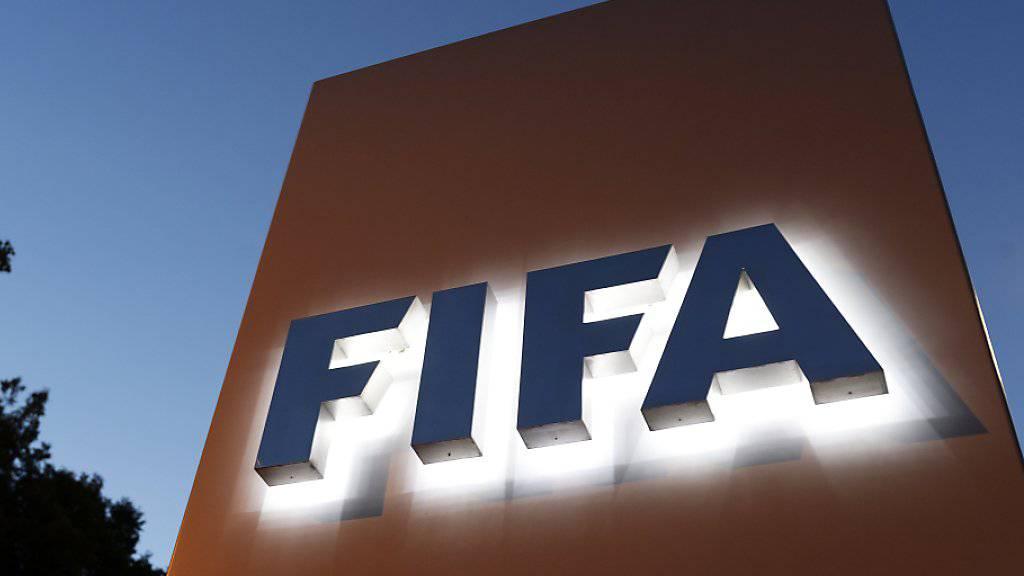 Der DFB klärt eine 6,7-Millionen-Zahlung an die FIFA nochmals ab.