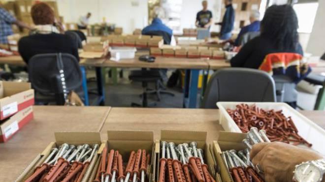 In der Dock Limmattal arbeiten zurzeit 182 Angestellte, die sich ihre Sozialhilfe selbst erarbeiten. Foto: Alex Spichale