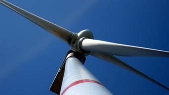 Windkraftanlagen sind umstritten: Komitee will Verbot von Windkraftanlagen durchsetzen
