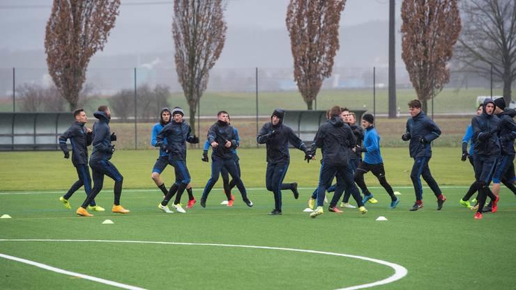 Der FC Wohlen beim Training.