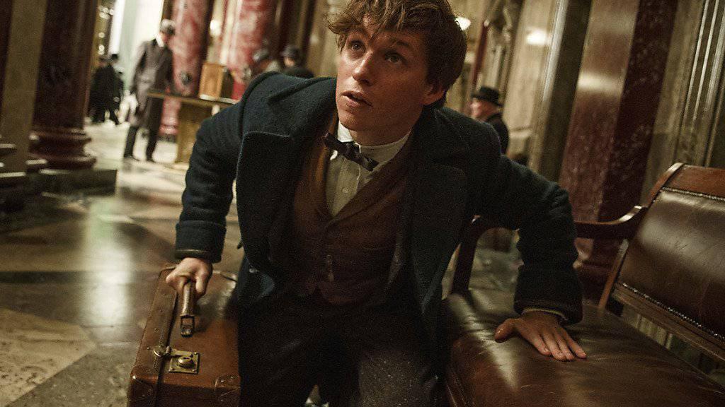 Schauspieler Eddie Redmayne ist der Star im Film «Fantastic Beasts and Where to Find Them».