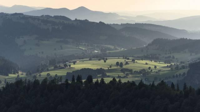 Wälder des Berner Jura