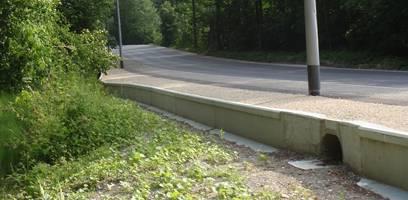 Durch kleine Tunnels wie diesen (rechts im Bild) unterqueren Frösche neuerdings die Dättwilerstrasse.