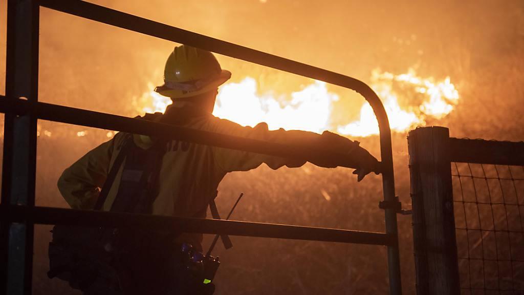 Mehr als 1000 Feuerwehrleute kämpfen gegen neuen Brand in Kalifornien