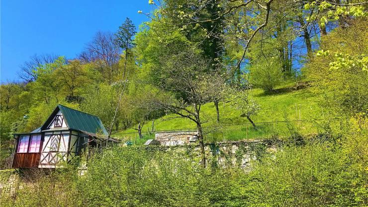 Das Grundstück «Schnägg» am Bruggerberg wird samt Rebhaus versteigert. zVg
