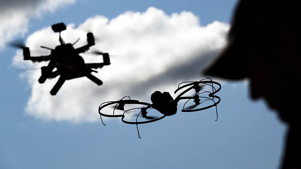 Zum Schutz von Vögeln und anderen Wildtieren gibt es nun ein Merkblatt für Drohnen-Pilotinnen und -Piloten. (Archiv)