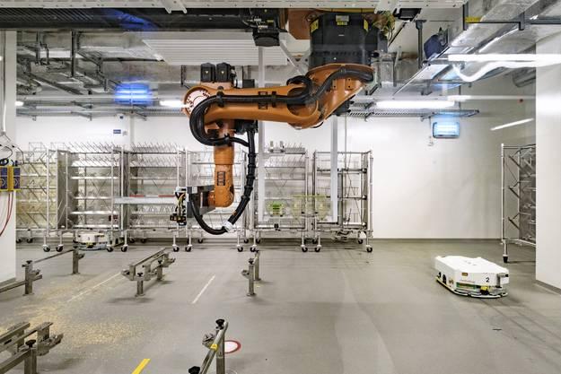 Viele Transporte im äusseren Bereich laufen automatisiert mit Robotern ab, hier werden sie gereinigt