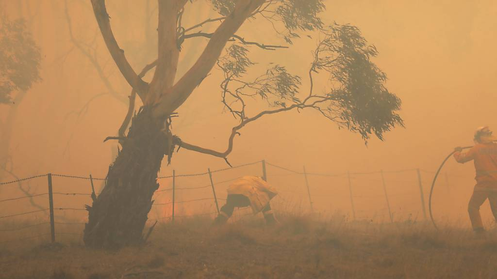 Experten: Hunderte starben an Rauch von australischen Buschfeuern