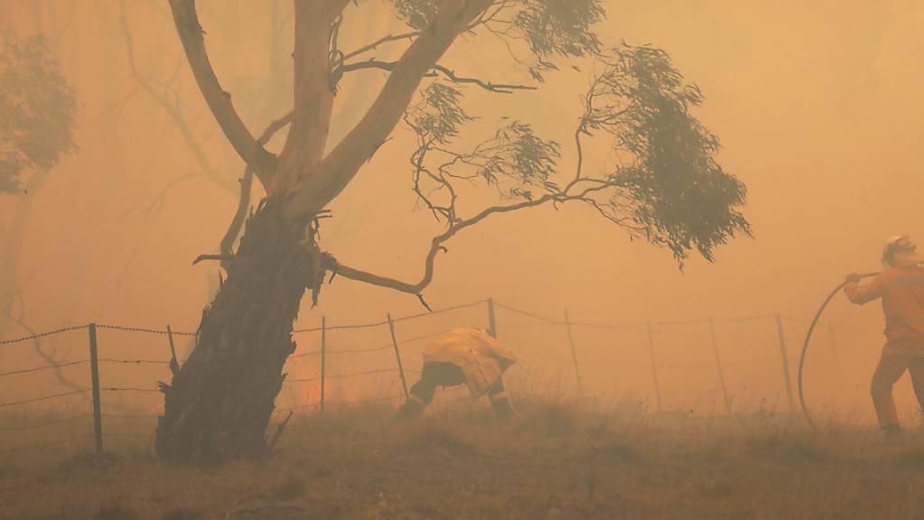 Der Rauch der verheerenden Buschfeuer in Australien im Februar hat Hunderten Menschen das Leben gekostet. (Archivbild)