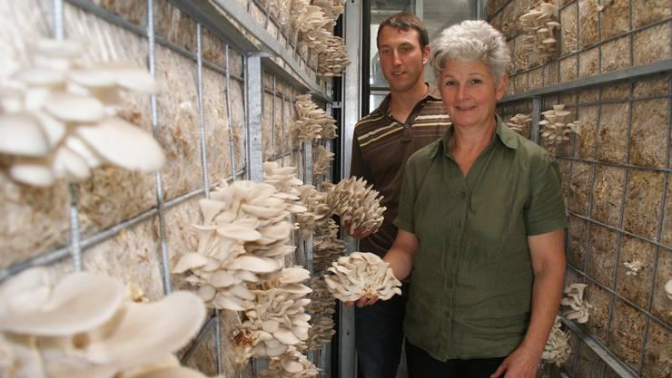 Mehr als die Hälfte der Austerpilze, die Coop verkauft, stammen von hier: Fabian mit Mutter Uschi Schneebeli bieten Einblick in ihr Treibhaus. (Bild Thomas Stöckli)