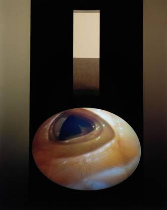 Mona Hatoum projeziert das Innere ihres Körpers nach aussen. Videoinstallation «Corps étranger» von 1994.