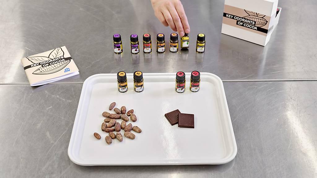 Zürcher Forscherinnen erstellten eine Bibliothek der Kakao-Aromen