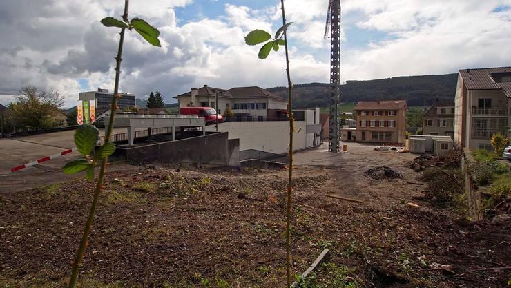 Aus dem Dornröschenschlaf erwacht: Der Baukran steht seit Montag auf dem Casino-Areal, am Mittwoch begannen die Bauarbeiten.