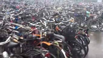 Tausende von Velos in allen Farben und Formen: Ein Rundgang über Amsterdams «Fietsdepot».