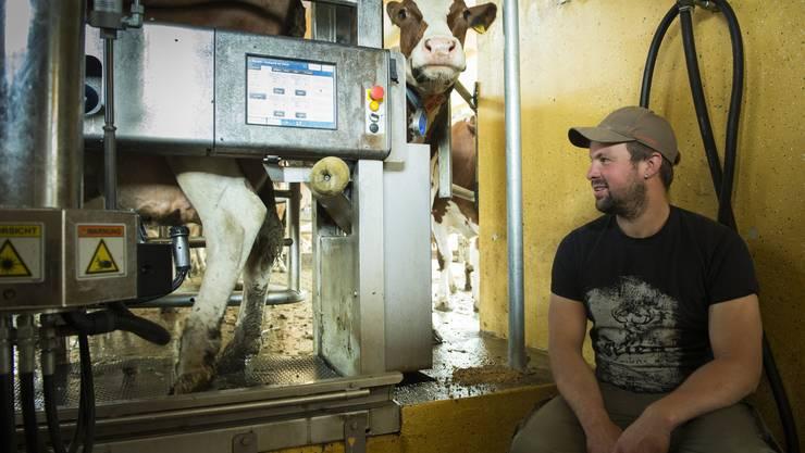 Der Melkroboter: Innert 24 Stunden vermag die Maschine doppelt so viele Kühe zu melken wie zuvor die Bauersfamilie. Remo Stierli kann auf dem Bildschirm nicht nur die Milchmenge ablesen, die eine Kuh gerade liefert, sondern auch deren Qualität.