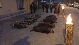 Die Beute aus der Jagd im Homberg war 11 Wildschweine und 8 Rehe.