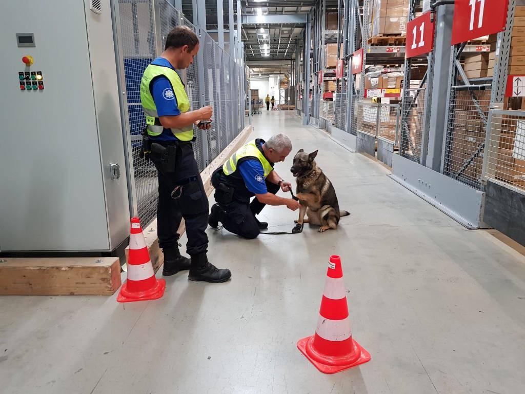 Die Hund suchten in der Ikea Sprengstoff