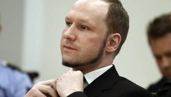 Attentäter Breivik vor Gericht (Archiv)