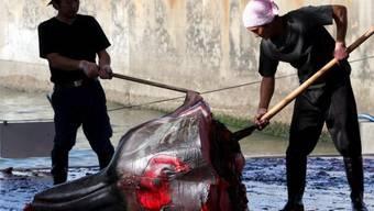 Japanische Fischer zerlegen einen Wal (Archiv)