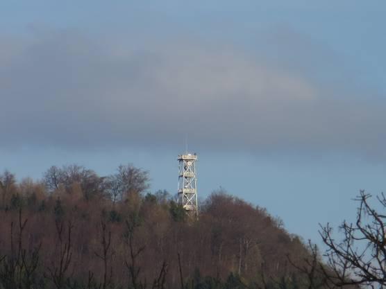 Der Liestaler Aussichtsturn, der Besuch von einem Gast Foto: Heidi Wundrak-Gunst