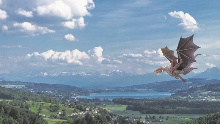 Drache im Anflug auf den Hallwilersee: Der Verein Seetal Tourismus will mit der «Seetaler Drachensage» vor allem Familien ansprechen.Fotos: Chris Iseli, Shutterstock; Montage: mta
