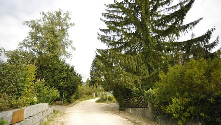 Die Kreuzenstrasse in Solothurn soll geteert werden