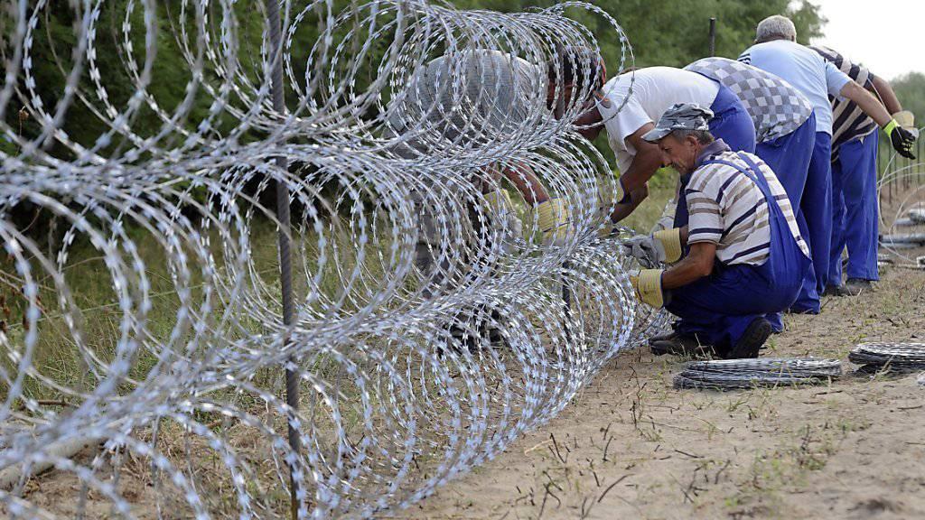 Ein solcher Grenzzaun, wie er von Ungarn zur serbischen Grenze hin gebaut wurde, soll nun auch zwischen Ungarn und Rumänien entstehen. (Archiv)