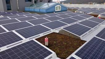 Sonnenenergie zu fördern, wäre eine Möglichkeit für die Gemeinden, um Klimaschutz zu betreiben.