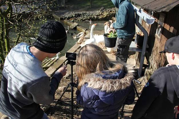 Schnatter schnatter - die Tierlaute sind ein wichtiger Bestandteil vom Film.