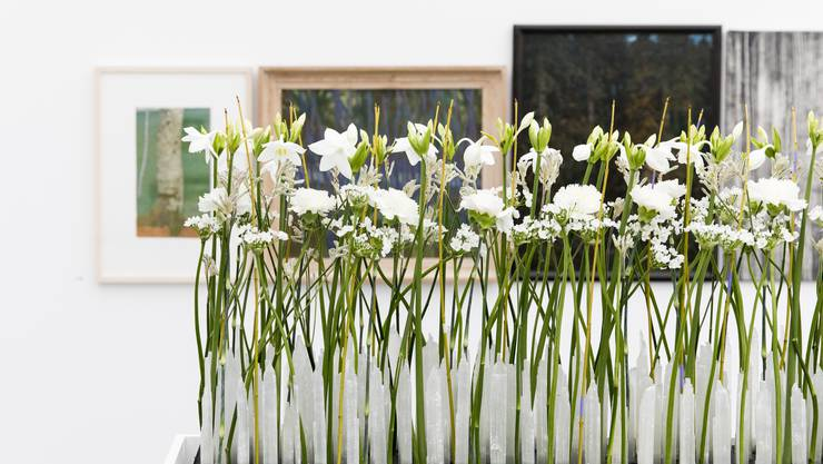 Im oberen Stockwerk des Kunsthauses werden die Besucher durch das Arrangement der St. Galler Floristin Sandra Diener begrüsst. Sie interpretiert «Through the Bamboo Grove» von Mireille Gros.