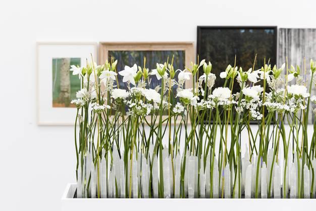 Im oberen Stockwerk des Kunsthauses werden die Besucher durch das Arrangement der St. Galler Floristin Sandra Diener begrüsst. Sie interpretiert «Through the Bamboo Grove» von Mireille Gros.