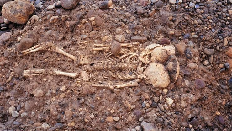 Sterbliche Überreste informieren Archäologen am Konkretesten über die Lebensbedingungen in früheren Zeiten.