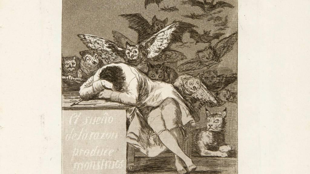 Eine Albtraumszene von Goya: «Der Schlaf / Traum der Vernunft gebiert Ungeheuer».