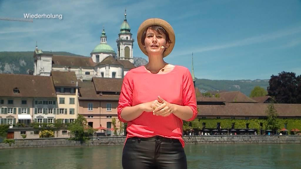 Quizzenswert in Solothurn