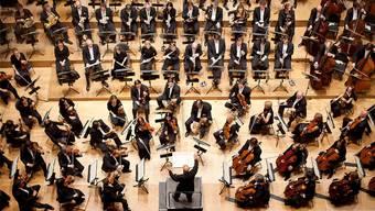 Das Sinfonieorchester mal aus einer anderen Perspektive.