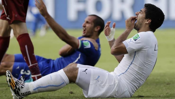 Luis Suarez spielt den sterbenden Schwan, dabei hat er Giorgio Chiellini (im Hintergrund) zuvor in die Schulter gebissen